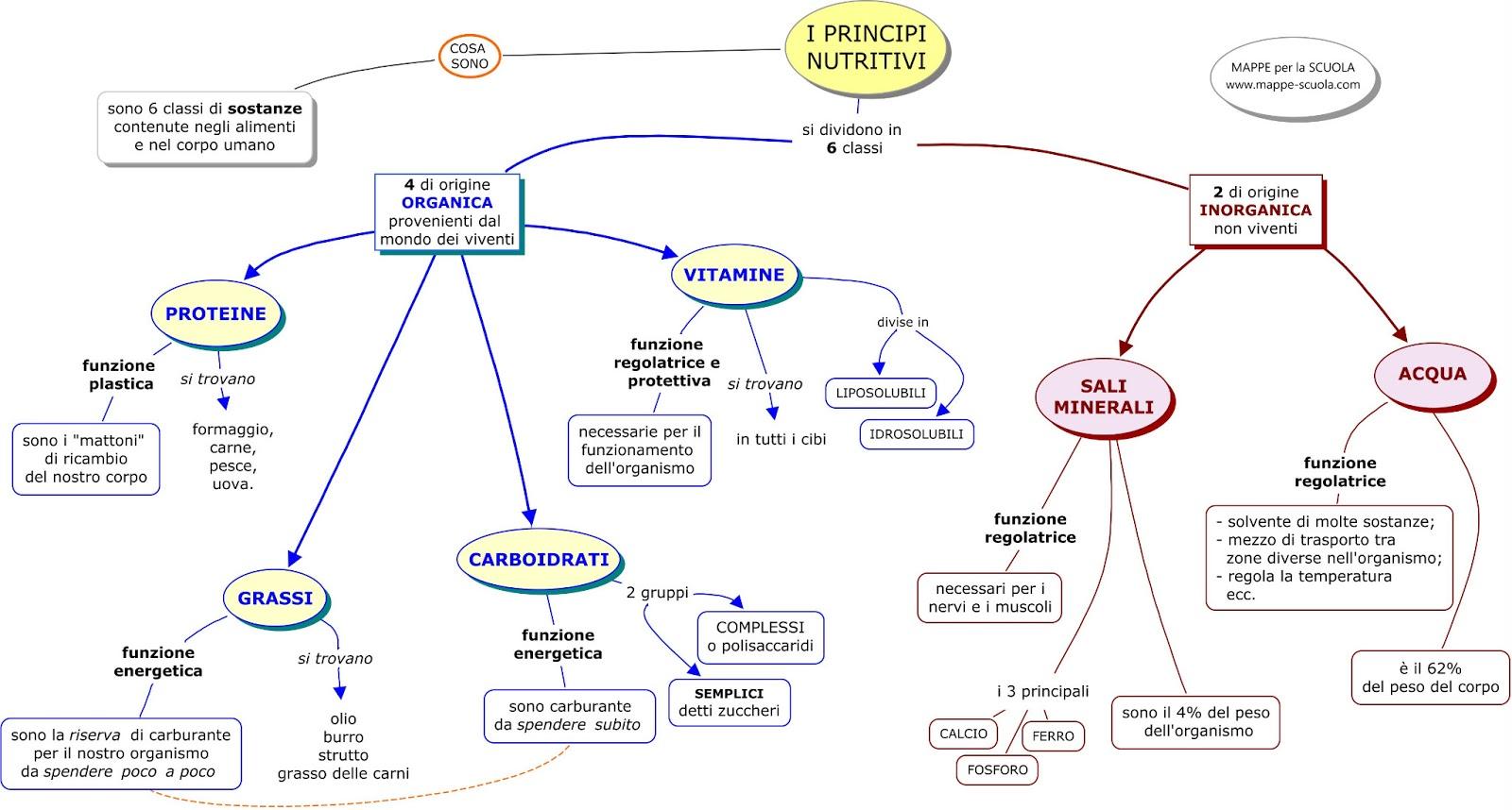 Mappa Concettuale Principi Nutritivi Materiale Per